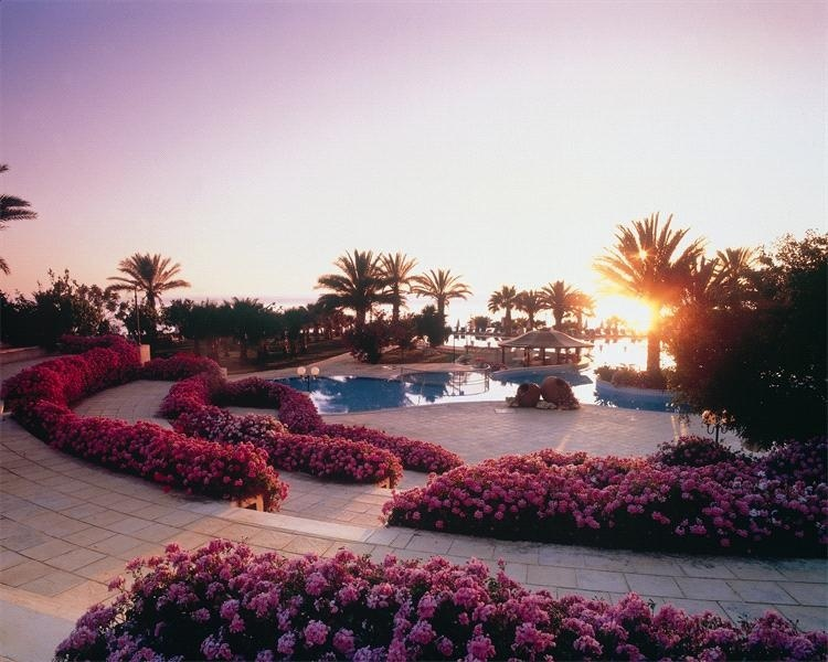 Azia resort spa кипр